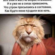 Александр111